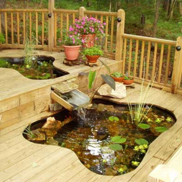 A beautiful pond in canton georgia home design garden for Outdoor plastic ponds