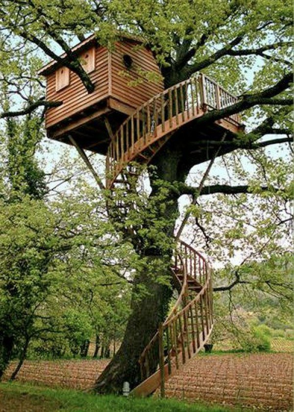 Amazing worlds tour beautiful and amazing tree house pictures for Amazing house pictures