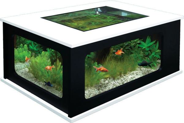 Make fish tank coffee table pdf woodworking for Coffee table fish tank for sale