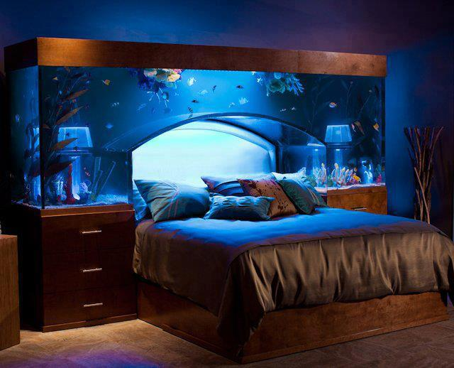 Amazing aquarium bed headboard home design garden for Bedroom fish tank