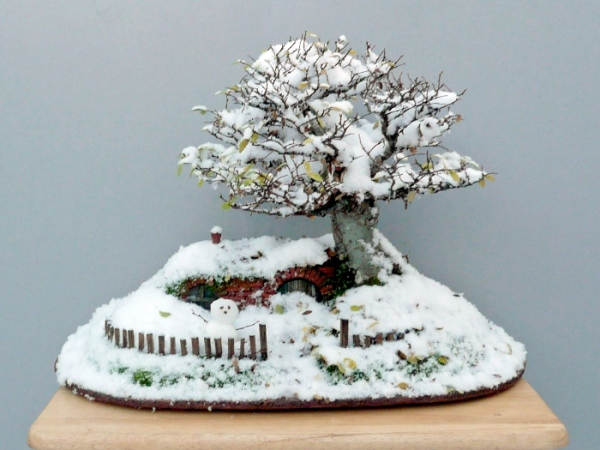 Bonsai-home-hobbit-11