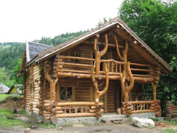 Amazing log home with a wild design home design garden for Amazing small homes