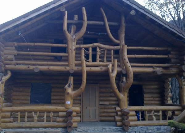 log-home-wild-design