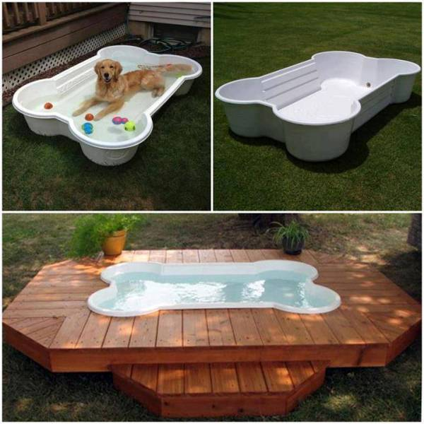 Dog Bone Pool Home Design Garden Architecture Blog Magazine