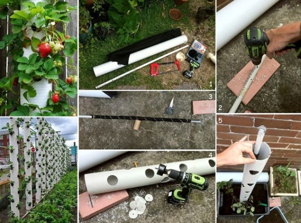How to make a vertical strawberry tube planter home Garden tube