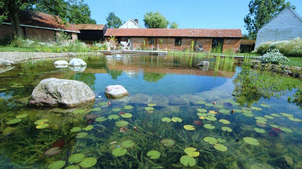 The biotop natural pools - How to make a natural swimming pool ...