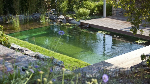 The biotop natural pools home design garden for Pond without filter