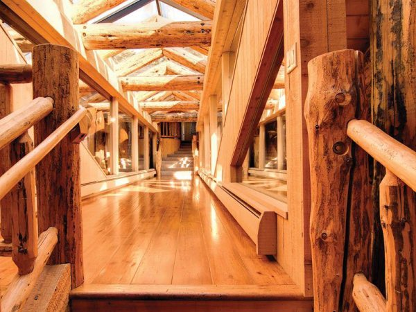 the-hallways-keep-with-the-wood-theme