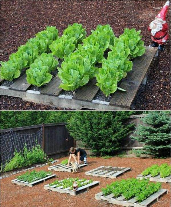 Raised bed gardening home design garden architecture for How to make garden beds from pallets
