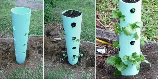 PVC-Projects-for-Your-Homestead-11