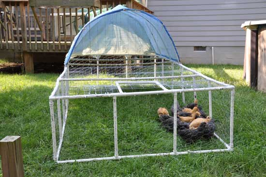 PVC-Projects-for-Your-Homestead-14